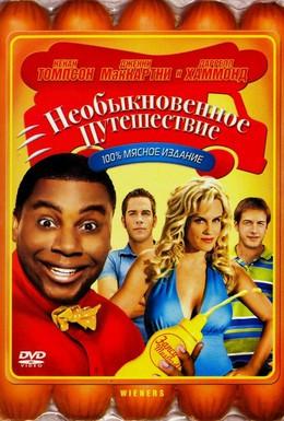 Постер фильма Необыкновенное путешествие (2008)
