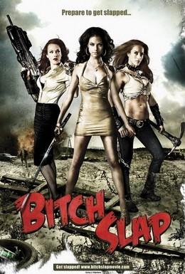 Постер фильма Стервозные штучки (2009)