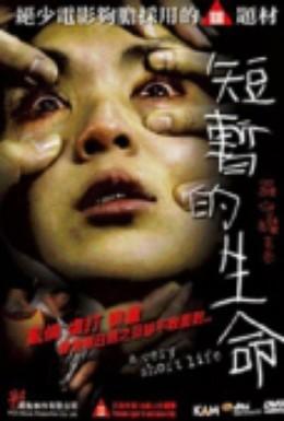 Постер фильма Очень короткая жизнь (2009)