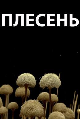 Постер фильма Плесень (2009)