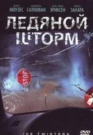 Ледяной шторм (2009)