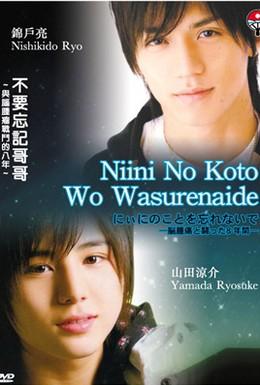 Постер фильма Не забывай о Ниини (2009)
