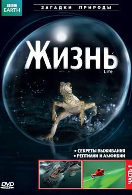 Постер фильма Жизнь (2009)