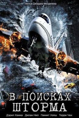 Постер фильма В поисках шторма (2009)