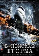 В поисках шторма (2009)