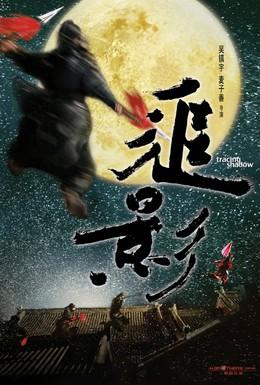 Постер фильма В погоне за тенью (2009)