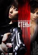 Стены (2009)