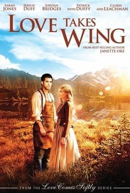Постер фильма У любви есть крылья (2009)