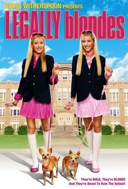 Постер фильма Блондинки в законе (2009)