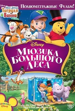 Постер фильма Мои друзья Тигруля и Винни: Мюзикл Большого леса (2009)