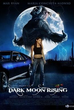 Постер фильма Восхождение черной луны (2009)