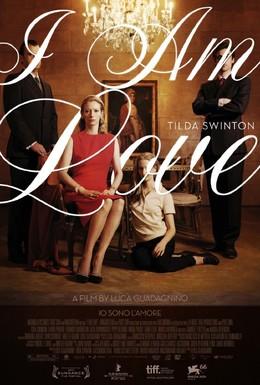 Постер фильма Я - это любовь (2009)