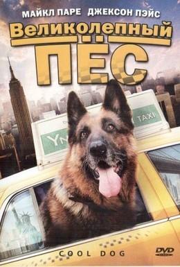 Постер фильма Великолепный пес (2010)