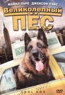 Великолепный пес (2010)