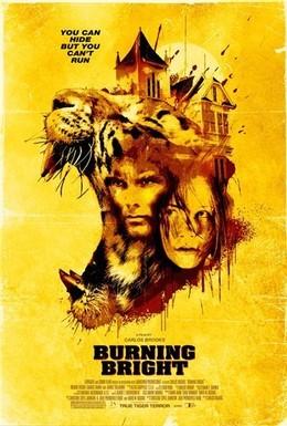 Постер фильма Во власти тигра (2010)
