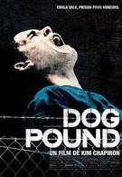 Загон для собак (2010)