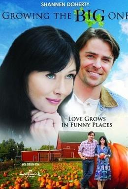 Постер фильма Огромный рост (2010)