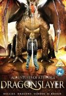 Приключения охотника на драконов (2010)