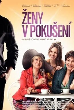 Постер фильма Женщины в соблазне (2010)