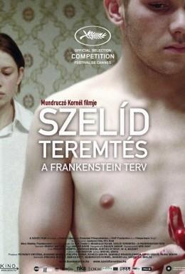 Постер фильма Любящий сын Франкенштейн (2010)