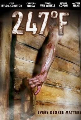 Постер фильма 247 градусов по Фаренгейту (2011)