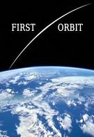 Первая орбита (2011)