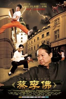 Постер фильма Цайлифо (2011)