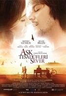Любовь любит случайности (2011)