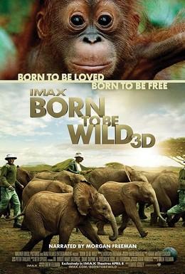 Постер фильма Рожденные на воле (2011)