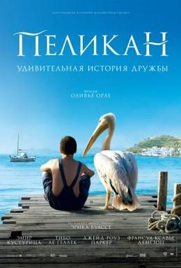 Постер фильма Пеликан (2011)
