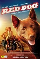 Рыжий пес (2011)