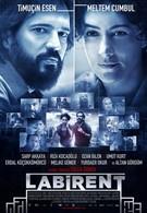 Лабиринт (2011)