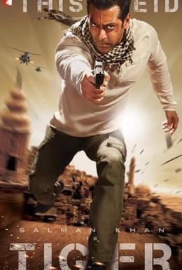 Постер фильма Жил-был тигр (2012)