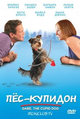 Постер фильма Пес-купидон (2012)