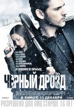 Постер фильма Черный дрозд (2012)