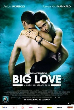 Постер фильма Большая любовь (2012)