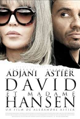 Постер фильма Давид и мадам Ансен (2012)