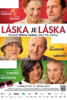 Постер фильма Любовь есть любовь (2012)