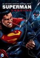Супермен: Непобеждённый (2013)