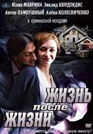 Жизнь после жизни (2013)
