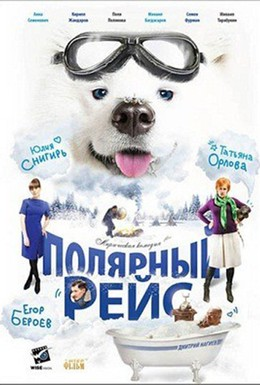 Постер фильма Полярный рейс (2013)