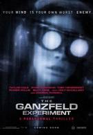 Эксперимент Ганцфельда (2014)