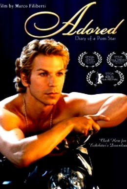 Постер фильма Дневник порнозвезды (2003)
