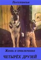 Жизнь и приключения четырех друзей (1980)