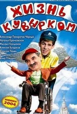 Постер фильма Жизнь кувырком (2003)