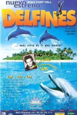 Постер фильма Дельфины (2000)