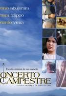 Сельский концерт (2005)
