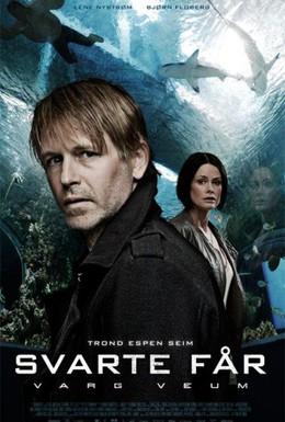 Постер фильма Варг Веум 8 – Черная овца (2011)