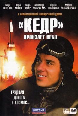Постер фильма Кедр пронзает небо (2011)
