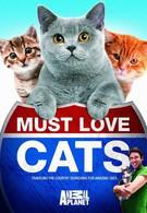 Кошек не любить нельзя (2011)